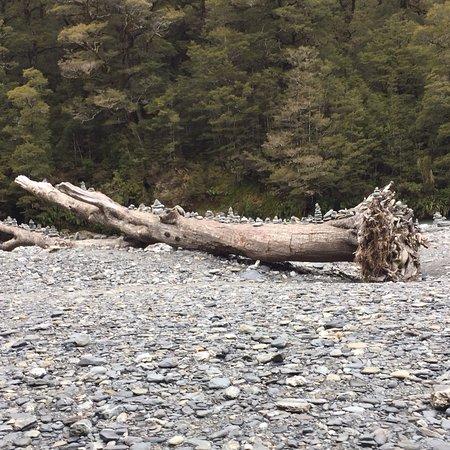 West Coast Region, Nowa Zelandia: photo3.jpg