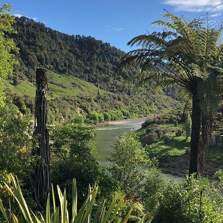 Te Araroa oasis