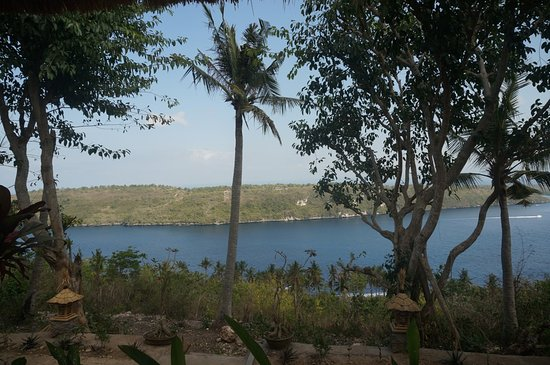 Pictures of Gamat Garden Home Stay - Nusa Penida Photos