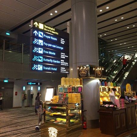 Changi, Singapore: photo3.jpg