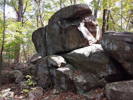 Foto de Sourland Mountain Preserve
