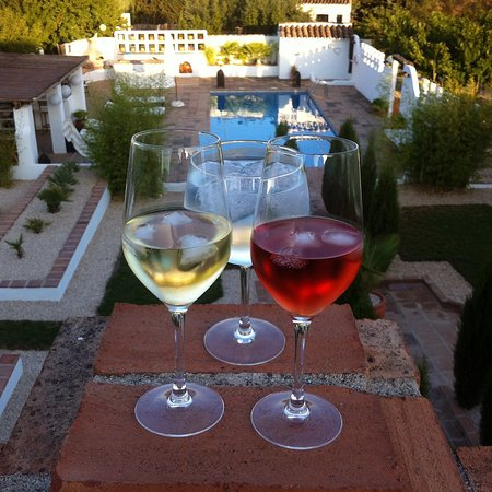 Villanueva del Rosario, Ισπανία: wine glasses & pool
