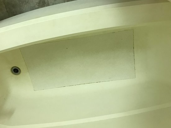 Wauseon, OH: Mold sticking to the tub, that's NOT a mat, it's the tub floor!