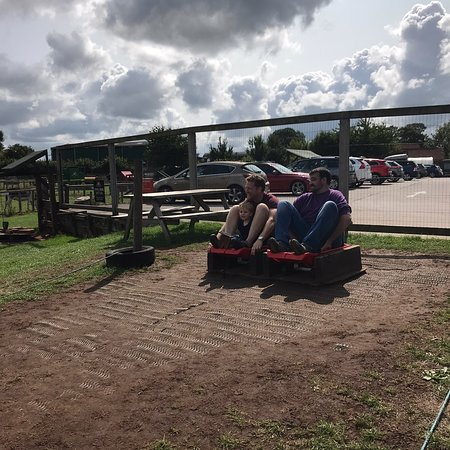 Farrington Gurney, UK: Farrington's Farm- Cowtastic Farm Park