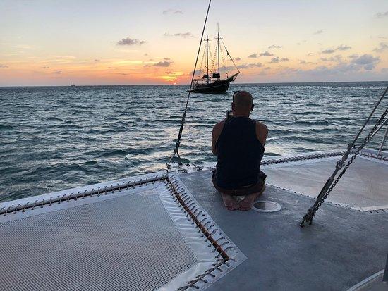 Octopus Aruba Sunset Sailing Caribbean Sea Cocktails