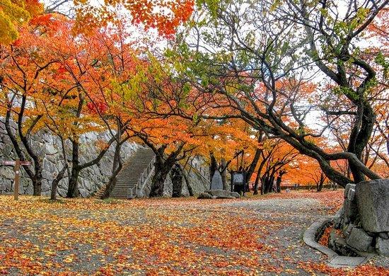 Morioka Castle Ruins