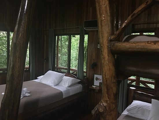 Tree Houses Hotel Costa Rica Bild