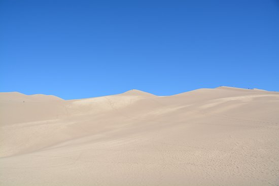 A section of the dunes