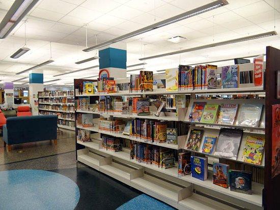 Oak Park Public Library: the collection