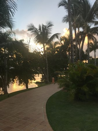 Landscape - Excellence Punta Cana Photo