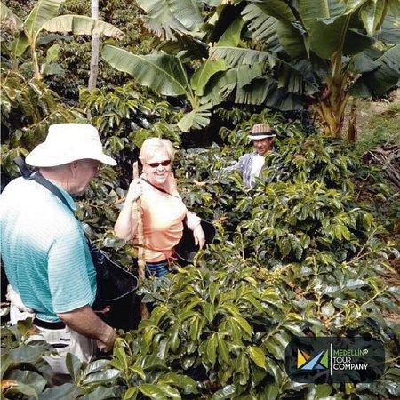 Medellin tour company