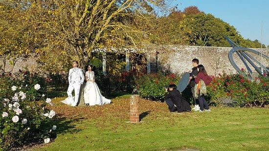 Gardens & Grounds of Herstmonceux Castle : 20181020_153855_large.jpg