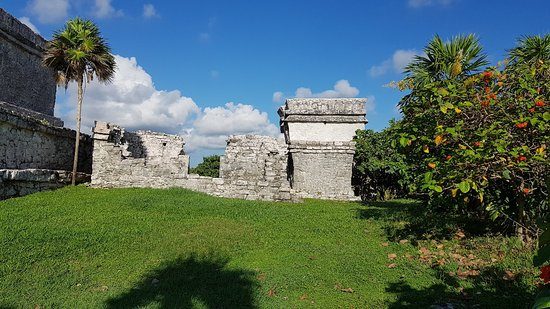 Ruins of Tulum: 20181014_085345_large.jpg