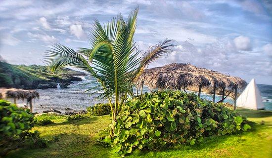 Long Bay, Jamaïque : garden & beach