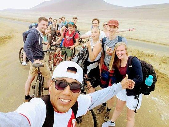 Lizard Peru Travel