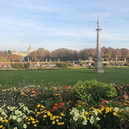 Ảnh về Luxembourg Gardens