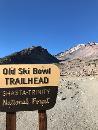 Shasta Vortex- Day Tours (Mount Shasta) - 2019 All You Need