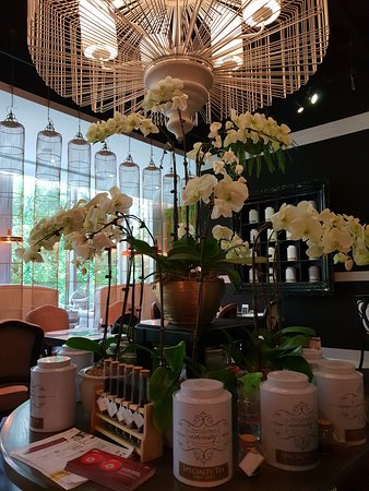 Arteastiq Boutique Tea House Photo