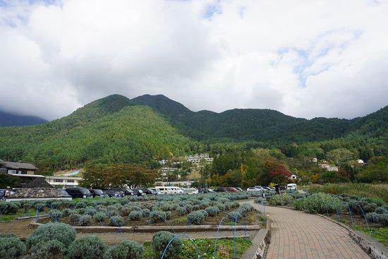 Lake Kawaguchiko: Organic farm.