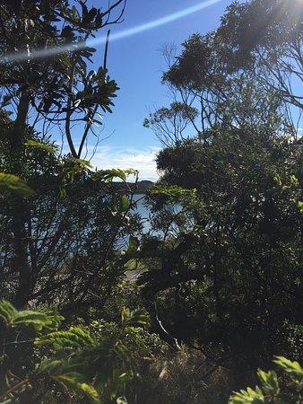 Marlo, Australia: Snowy River Estuary Walk