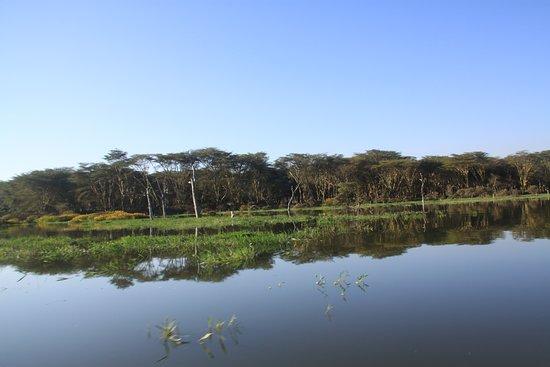 Rift Valley Province, Kenya: reflejo