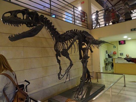 Un dinosaurio te recibe