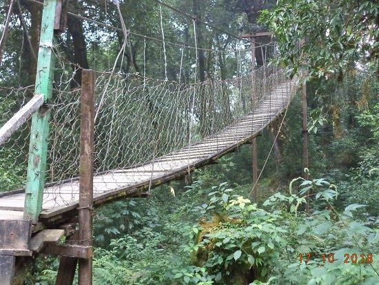 Loleygaon, Indien: The hanging bridge