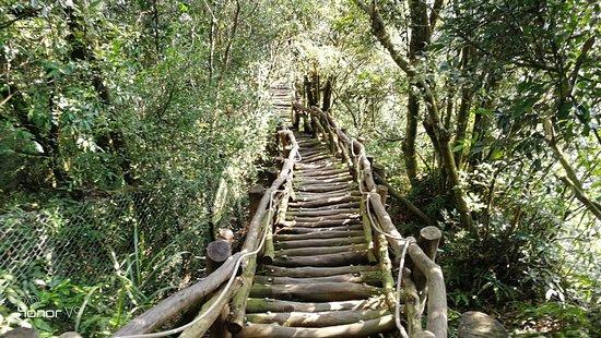 Dakeng No.3 Trail