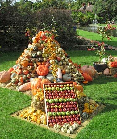 Wisley, UK: Pumpkin panoply!