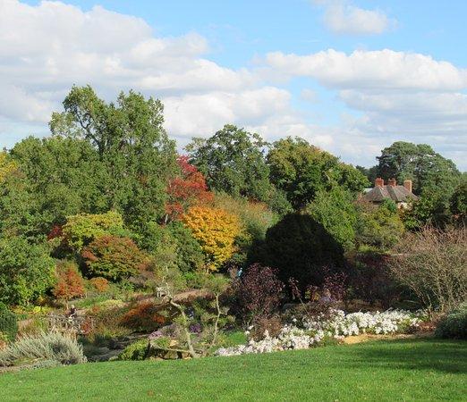 Wisley, UK: Autumn colours