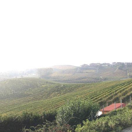 Cordero di Montezemolo: photo6.jpg