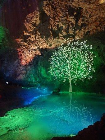 Pont en Royans, Frankrike: grottes