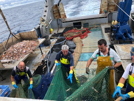 Pescaturismo EL Paraiso