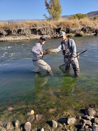 Rocky Mountain Outfitters: Brown trout on Middle Provo