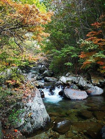 Danyang-gun, Južná Kórea: Darian Falls