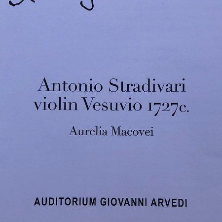 Museo del Violino: photo9.jpg