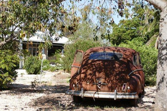 Dalwallinu, Αυστραλία: NASH