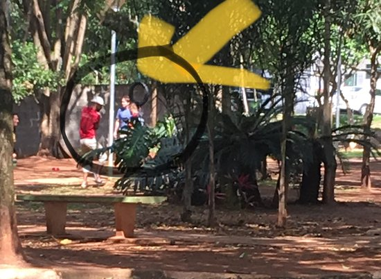 Pet Parque