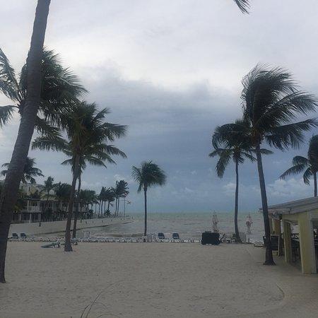 Wild weekend in Key West