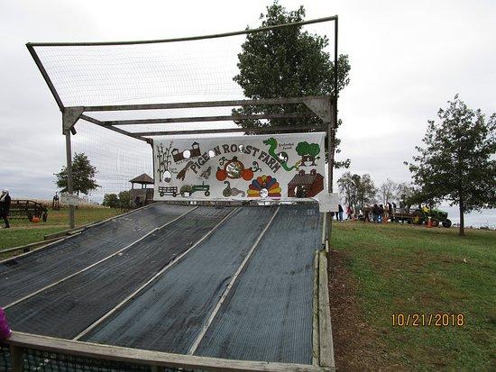 Hebron, OH: tennis ball target