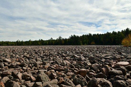 Boulder Field: DSC_6886_large.jpg
