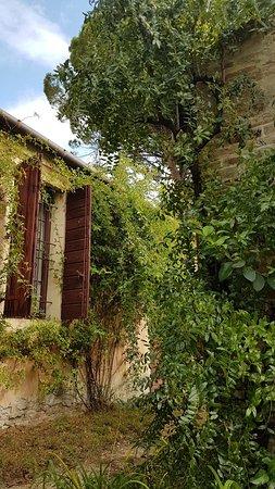 Stra, Italy: 20181007_115603_large.jpg