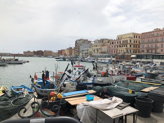 Anzio Tours : Anzio Port
