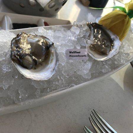 Sea Salt: photo1.jpg