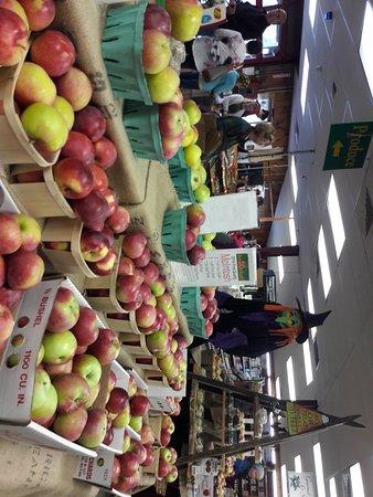 写真Bolton Orchards枚