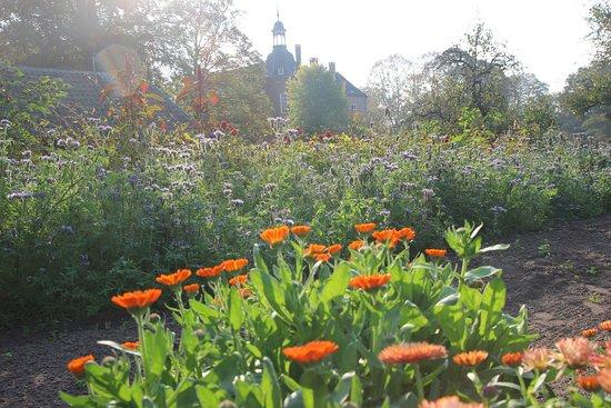 Heerlijk terras met uitzicht op bloementuin