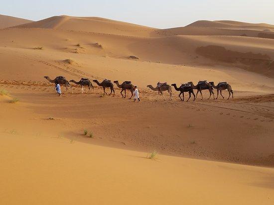 Rough Tours: Караван верблюдов