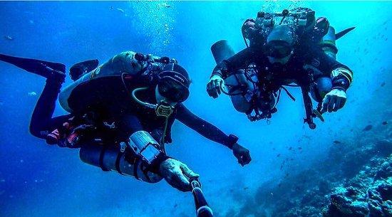 Ahmed Gabr Dive