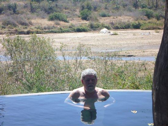 Singita Private Game Reserve, Afrika Selatan: Pool View