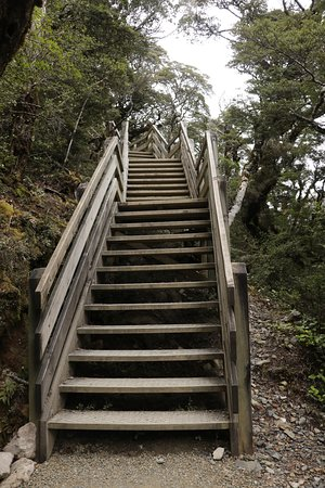Devils Punchbowl Walking Track: Wooden deck and stairs